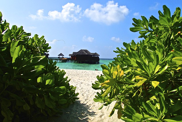 Fihalhohi resort, Maldives