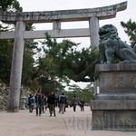 Hiroshima-Miyahima-10
