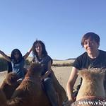 Cervezefilos en Mongolia 033