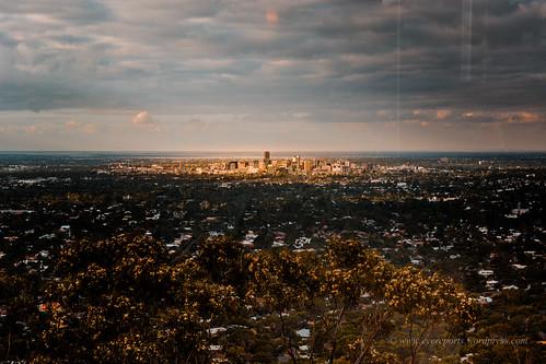 Adelaide,spotlit.jpg by gomagoti