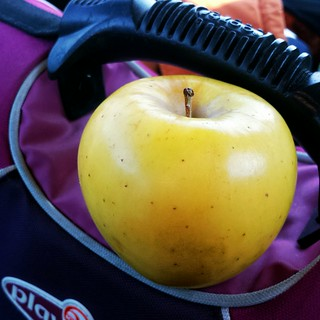 opal. 27/365 #apple #practice