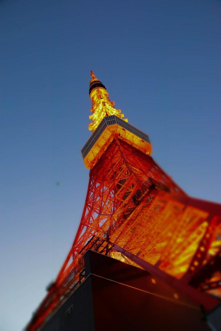2014/01/19 東京タワー
