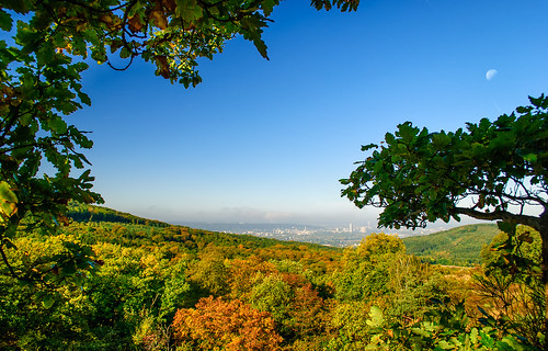 Blick aus dem Siebengebirge auf Bonn - Nikon D60