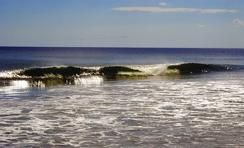 Waves with a Flock On the Horizon