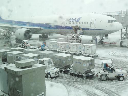 2014年2月8日大雪の羽田空港