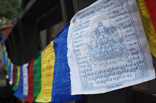blog.flags