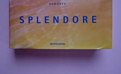 Margaret Mazzantini, Splendore. Mondadori 2013. Art Director: Giacomo Callo; Progetto Grafico: Marcello Dolcini; Graphic Designer: Susanna Tosatti; alla sovracop: ©R. McGinley. Prima di sovracop. (part.), 2
