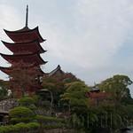 Hiroshima-Miyahima-16