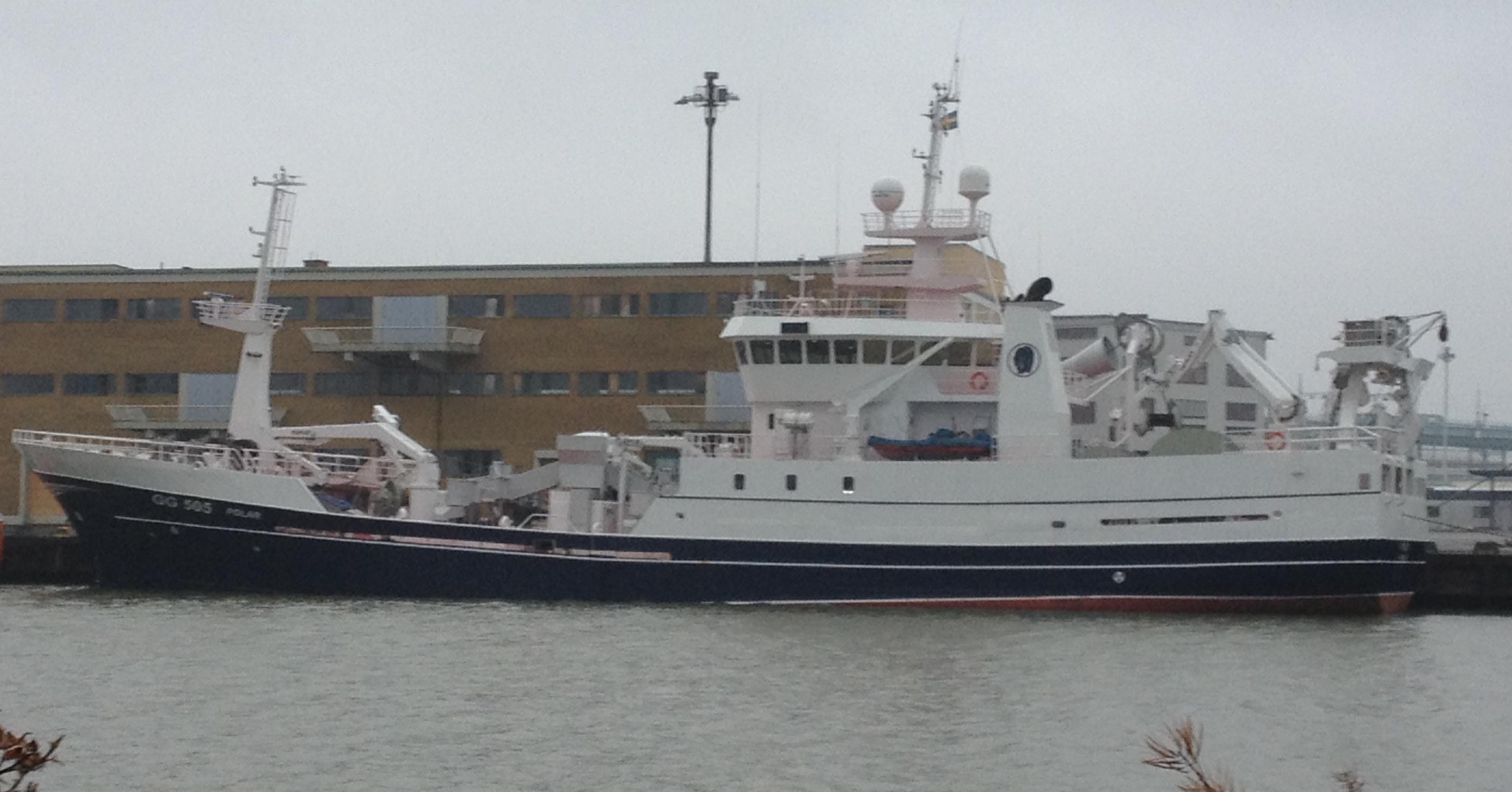 GG 505 Polar