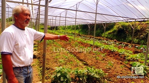 Mr. Jeffersson Laruan and his Organic Farm