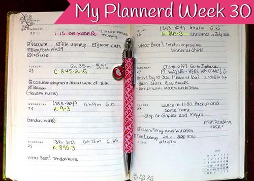 My Plannerd Week 30 by DIY Sara