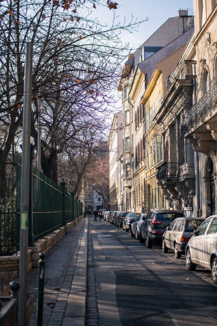 Budapest_January_2014_Prezi-7