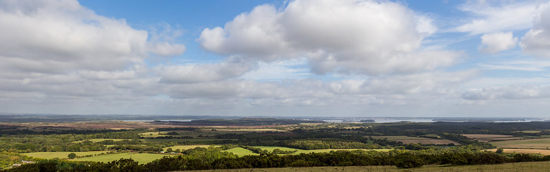 Poole Harbour from Knowle Hill