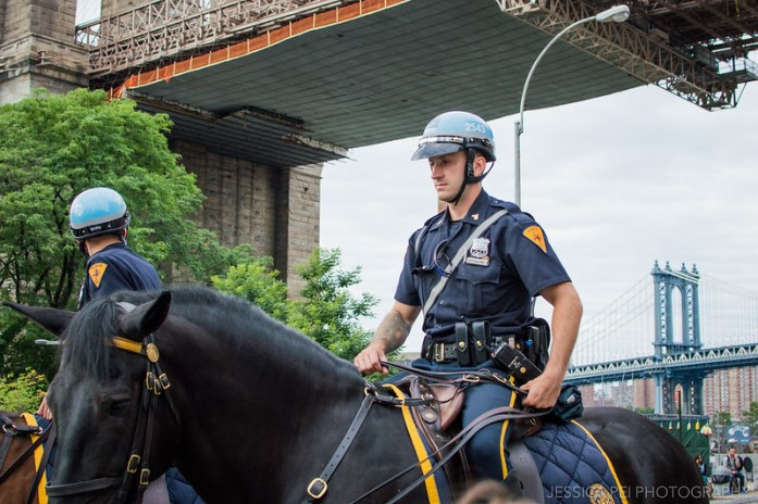 New York Police on Horse