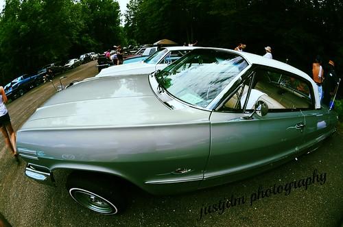 smooth impala (2)
