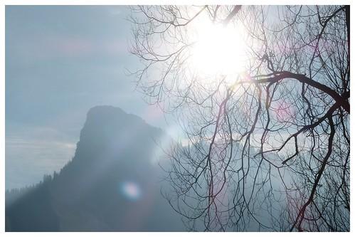 Grau 2014-01-196