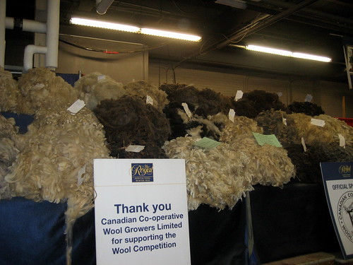Auction fleece at Royal Agricultural Winter Fair