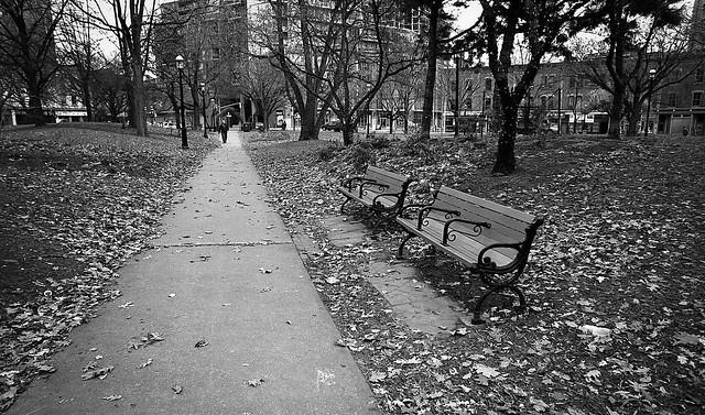 Park on King Street