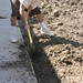 Digging trenches 3