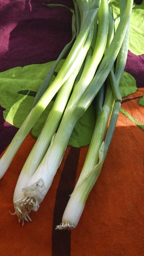 Spinach and Artichoke Dip 7