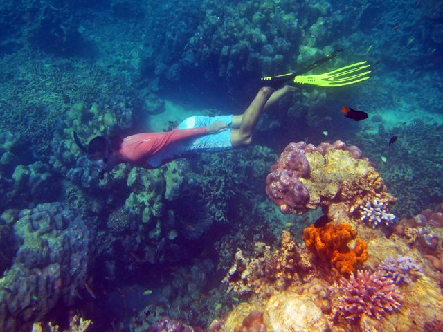 Snorkeling the Surins- Iona
