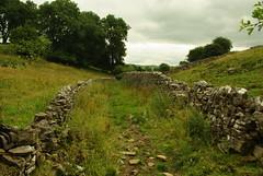 20130806-06_Walled Green Lane