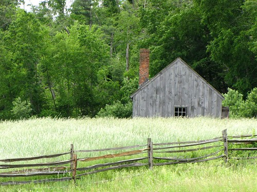 Old House & The Meadow