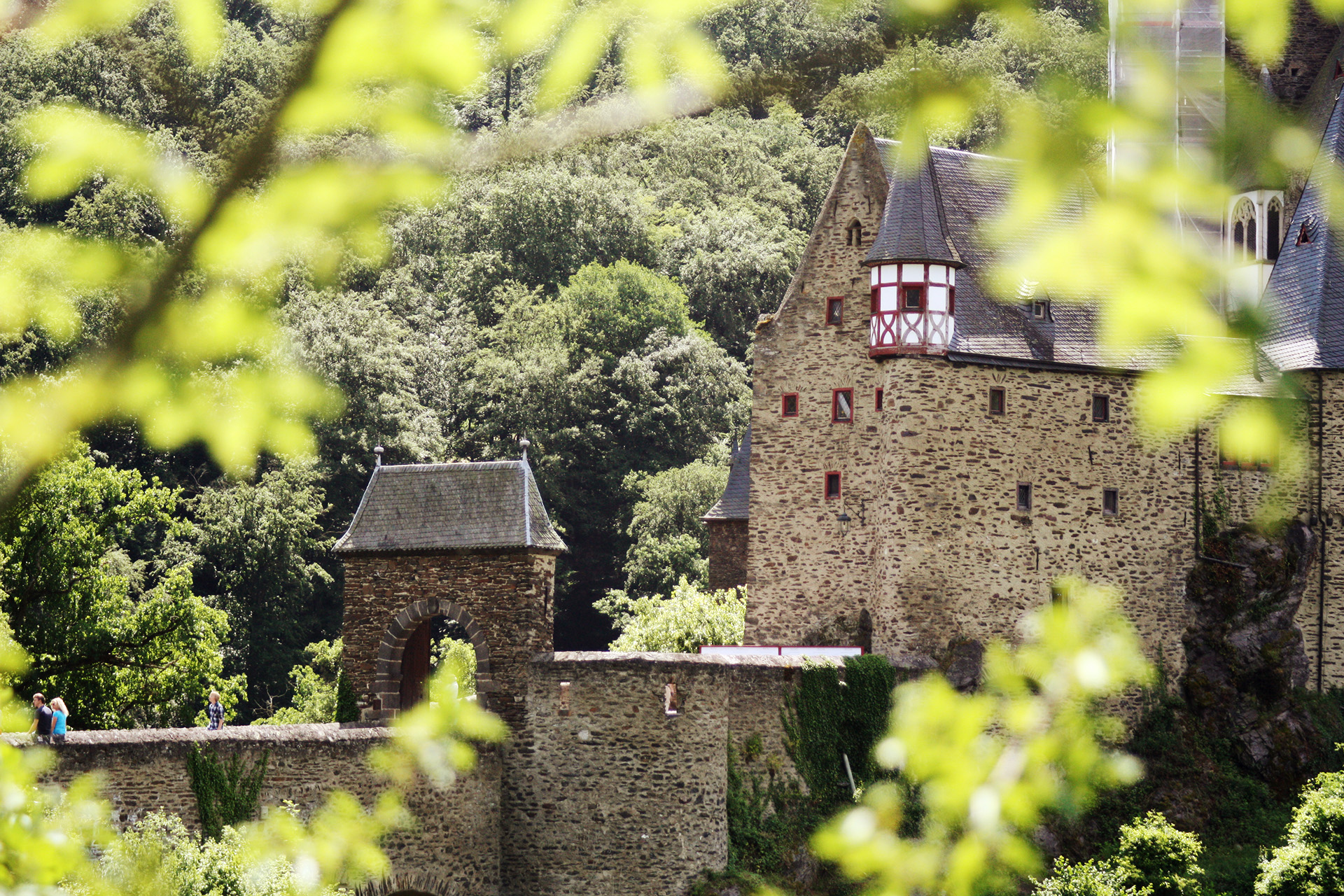 Burg Eltz peaking through the surrounding forest.