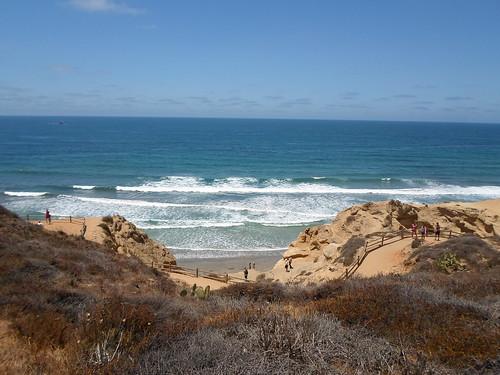 Overlooking Black's Beach