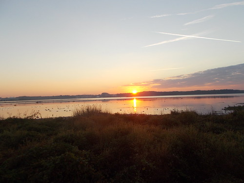 Potomac Sunrise 10/28/13 by Rootchopper