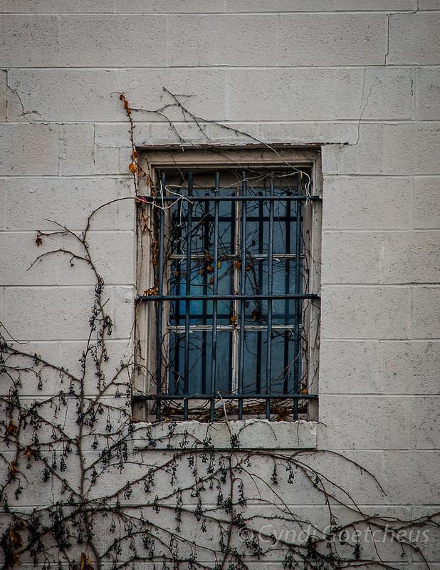 wabi sabi phoebus window