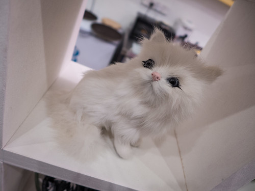 Purrfect_Cat_Cafe_Doll_Meat_12