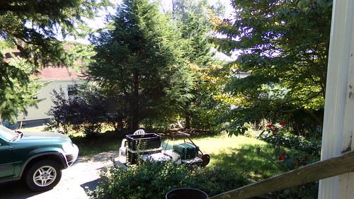 Back garden/driveway area - 9/20/13