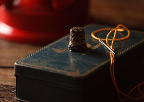 thimble, needle and thread by Luiz L.
