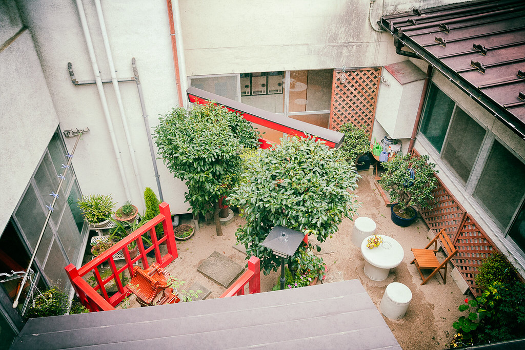 A view to the garden from the window