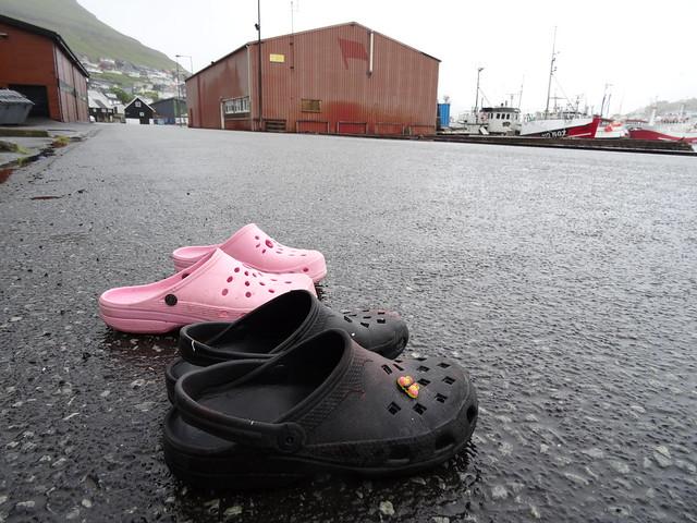 Crocs on the quay