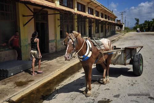 Taking a break by Rey Cuba