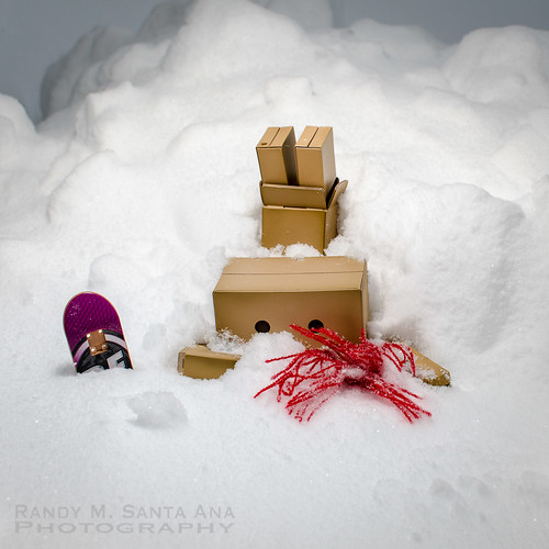 Danbo Snowboard Wipe Out.