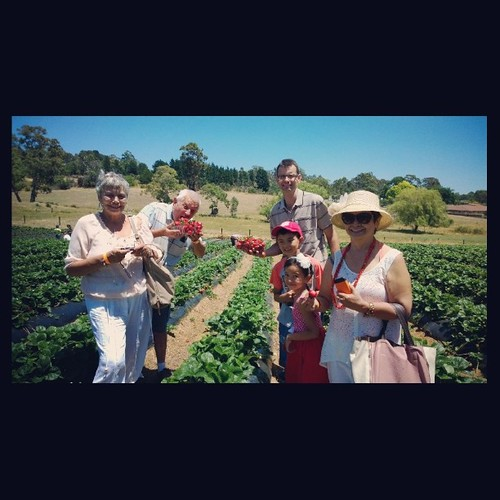 It was a great day for strawberry picking...