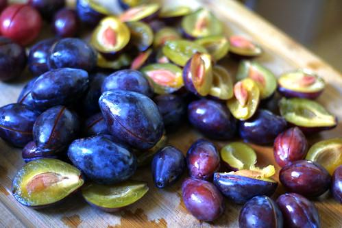 Freestone plums