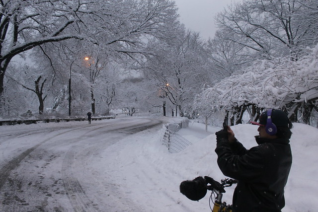 Snapshot of a Wintery Snapshot   Central Park