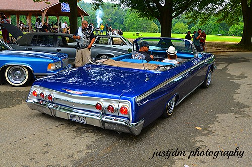 BEAUTIFUL BLUE  IMPALA VERT (3)