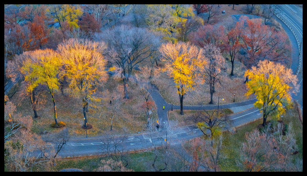 Morning Glow - Central Park - 2013