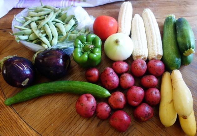 Homestead Creamery Vegetables Week 6