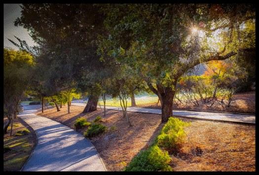 Sharon Park Sunrise