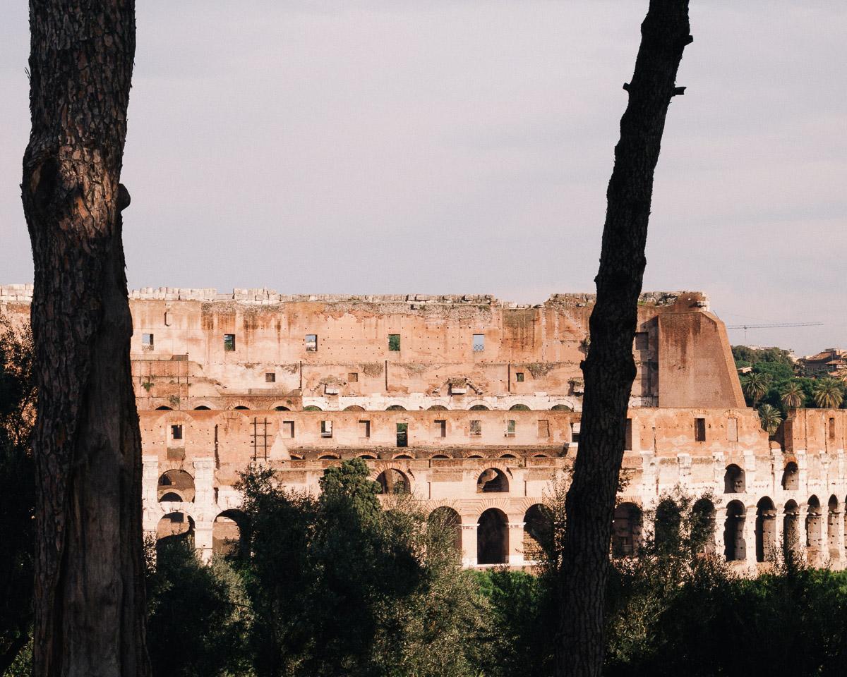 El Coliseo desde el Foro Palatino