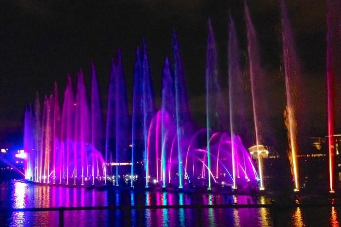 Disneyland Word of Color