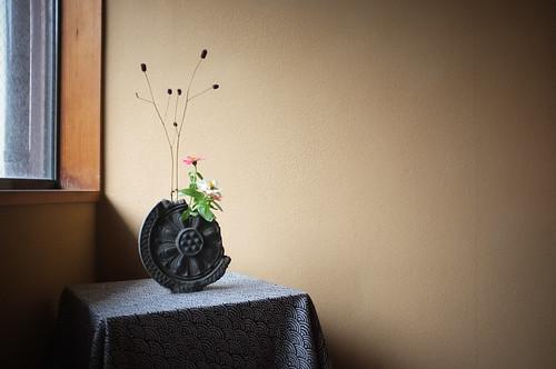 Flower by Paul Uehaller