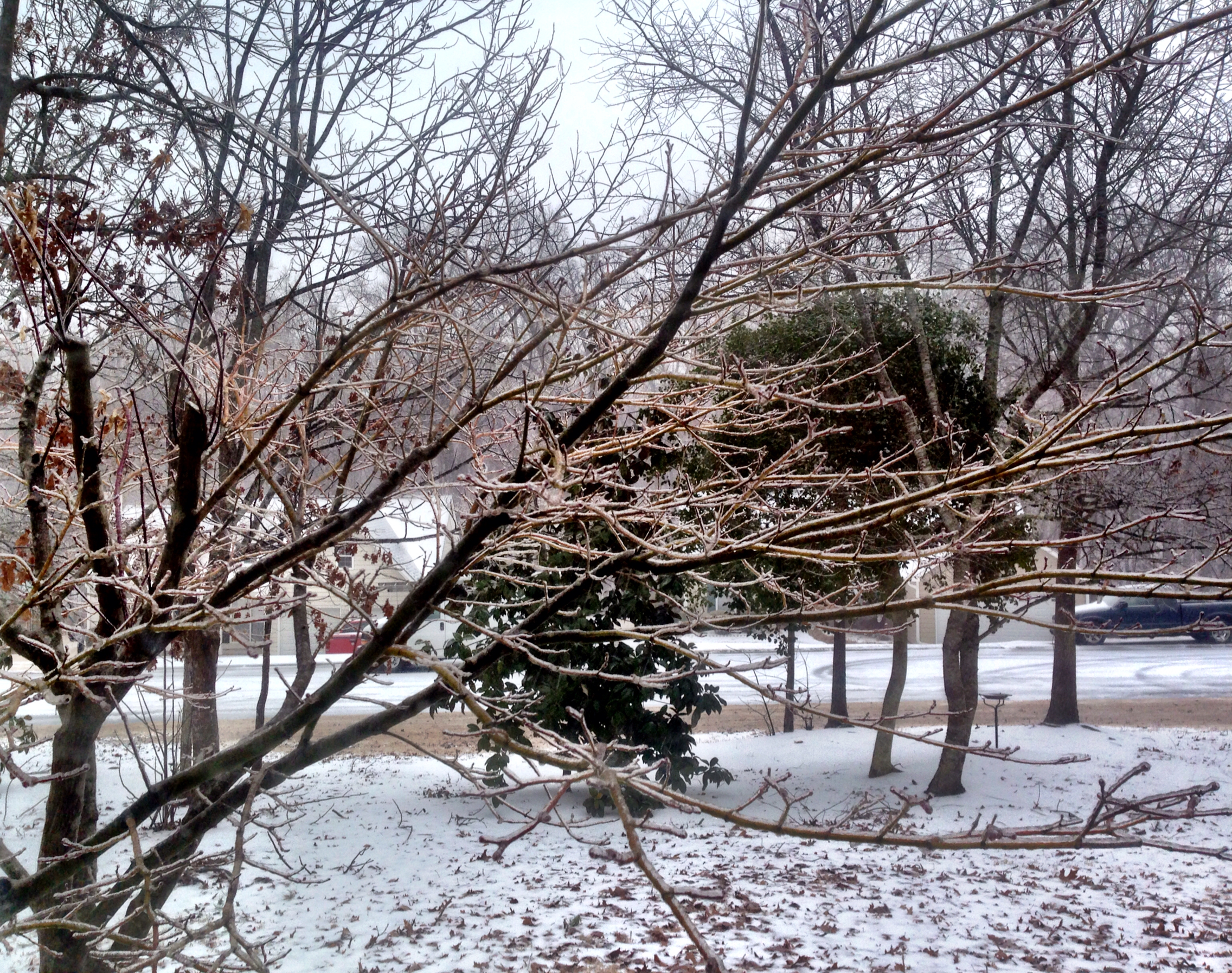 2014 Winter Storm II: The Return of the Ice.