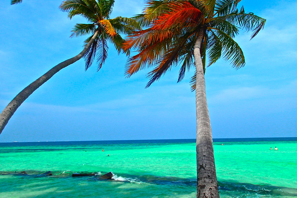 Maafushi beach, Maldives